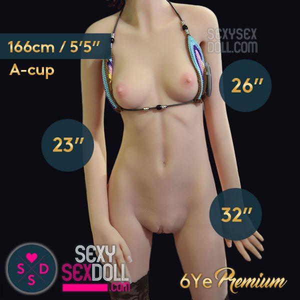 6ye 166cm A-cup premium body