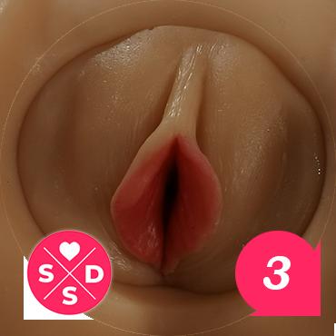 Vagina Insert Style 1